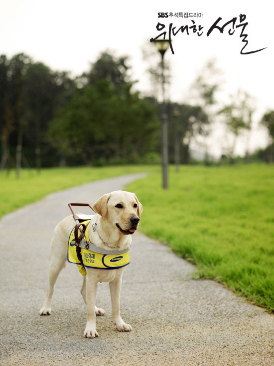 The Mighty Gift Blind Guide Dog