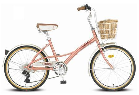 Bicycle Used by Goo Hye Sun in The Musical